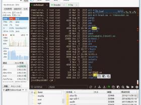 FinalShell SSH工具 服务器管理 远程桌面加速软件