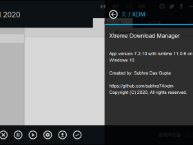 Xtreme Download Manager v7.2.10 免费 视频 软件下载工具